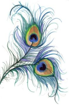 Purple Peacock Feather Drawing Galleryhipcom The